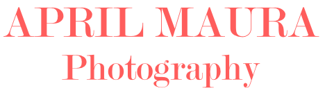 St. Louis Wedding Photographer | April Maura Photography | Scottsdale Wedding Photographer logo